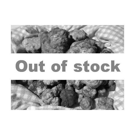 Fresh spring white truffle