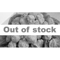 Truffe blanche fraîche 100 gr. (Tuber magnatum Pico) - Troisième choix